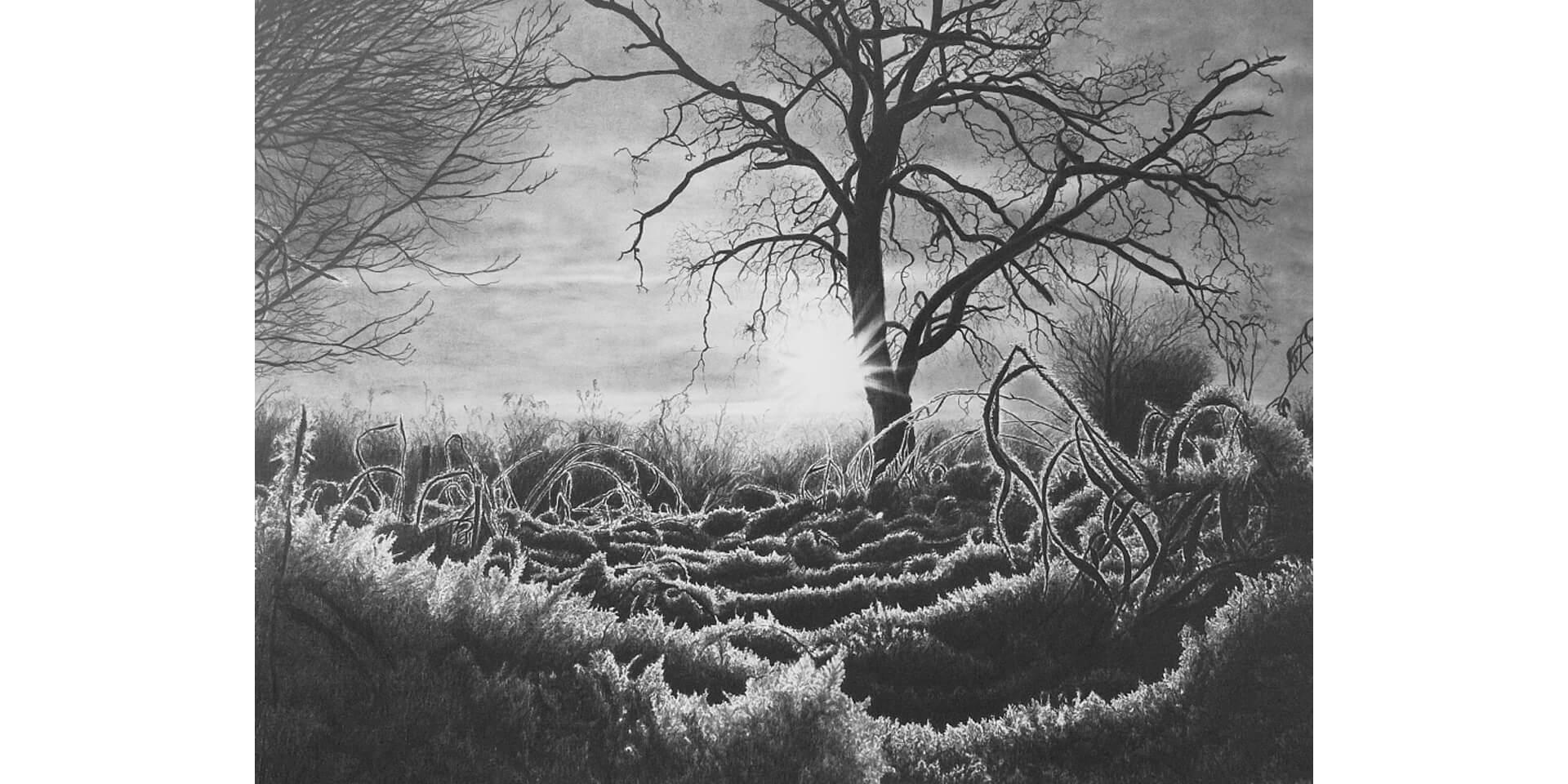 Eisiger Morgen, Bleistift, 51x68 cm, 2013