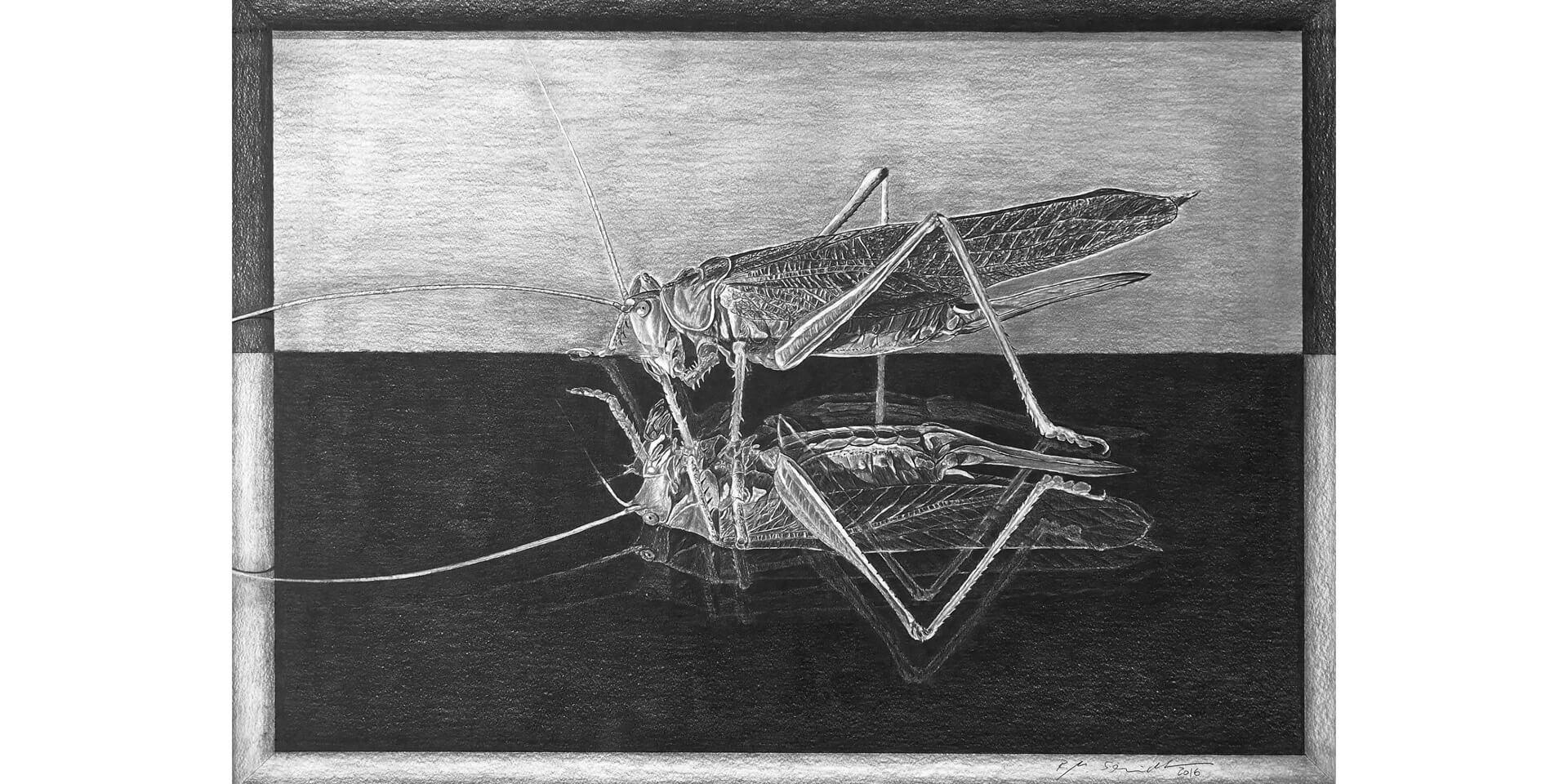 Erkenne Dich Selbst, Bleistift, 50x74 cm, 2016