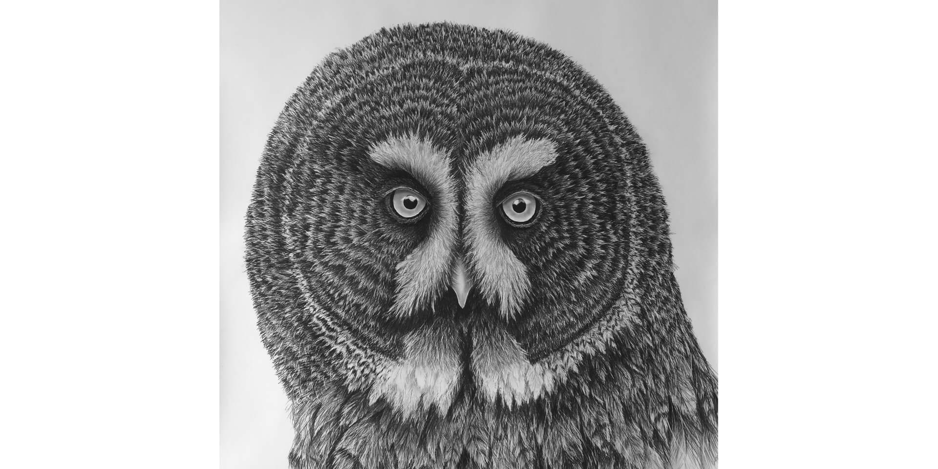 Spiegel, Bleistift, 90x110 cm, 2018