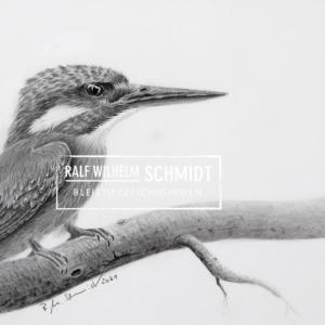 Eisvogel Ewald, Bleisiftzeichnung von Ralf Wilhelm Schmidt