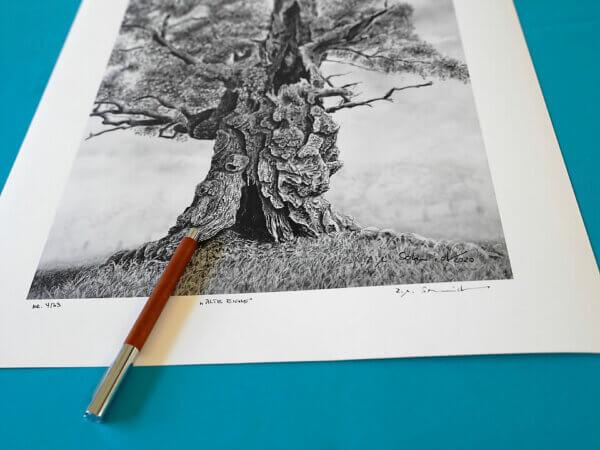 Alte Eiche, Fine Art Print