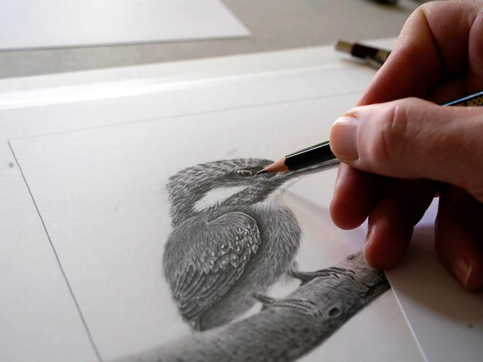Eisvogel Ewald,