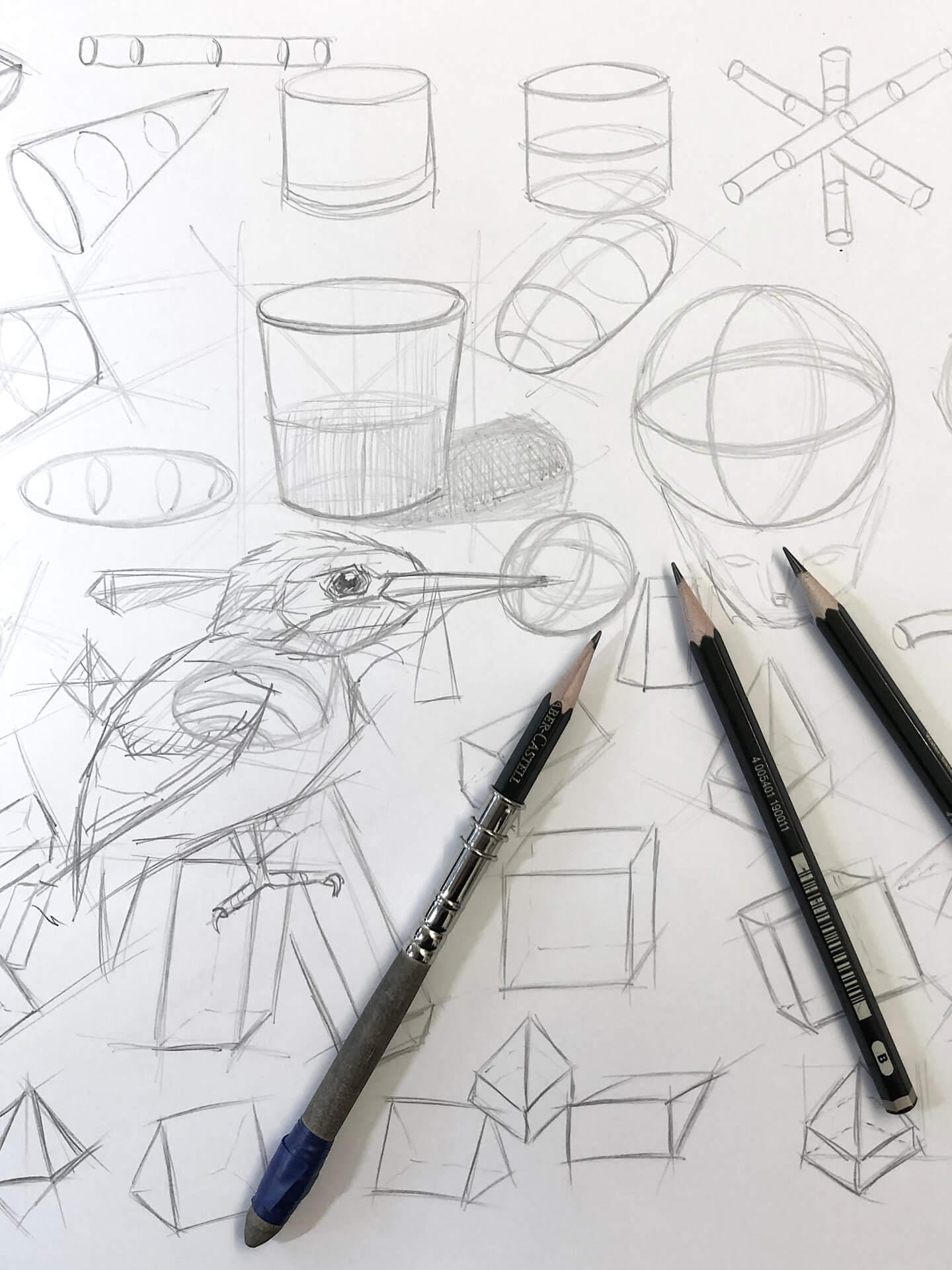 Zeichnen lernen Basic Kurs